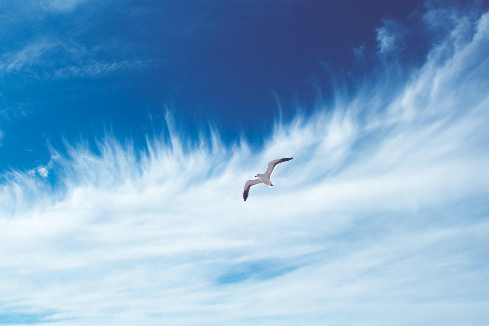 Luftholen während Corona